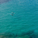 Couple swimming in the open sea with wetsuit